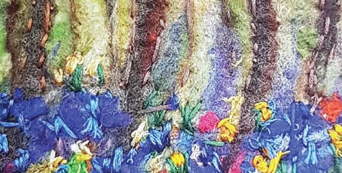 Blanchland Bluebells