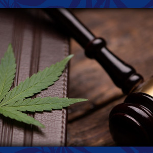 FTC's Operation CBDeceit Brings Action Against CBD Companies