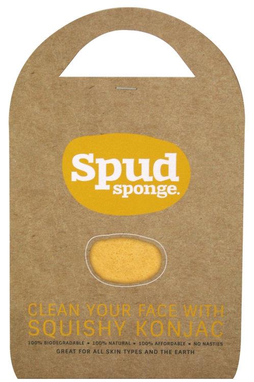 SPUD SPONGE Tumeric