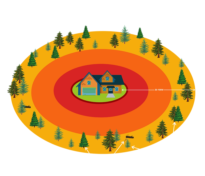 Zone3.png
