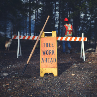 ONE MILLION DOLLAR GRANT HELPS LOCAL COMMUNITY FOREST IMPLEMENT STRATEGIC WILDFIRE PROTECTION PLAN - APRIL 25TH 2018