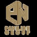 pavilion group logo PNG.png