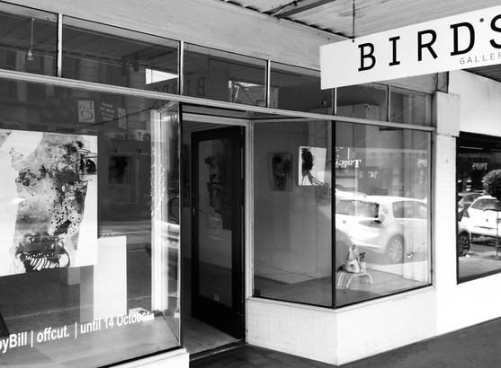 OFFCUT, Birds Gallery