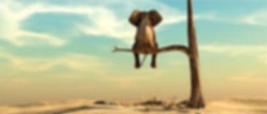 Elephant%20on%20tree%20branch_edited.jpg
