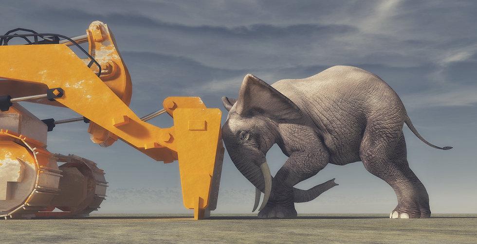 Elephant bulldozer.jpg