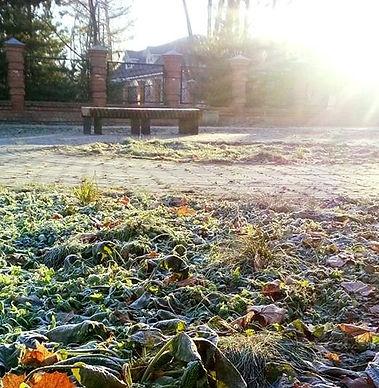 Ноябрь красивый вид с солнцем 2.jpg