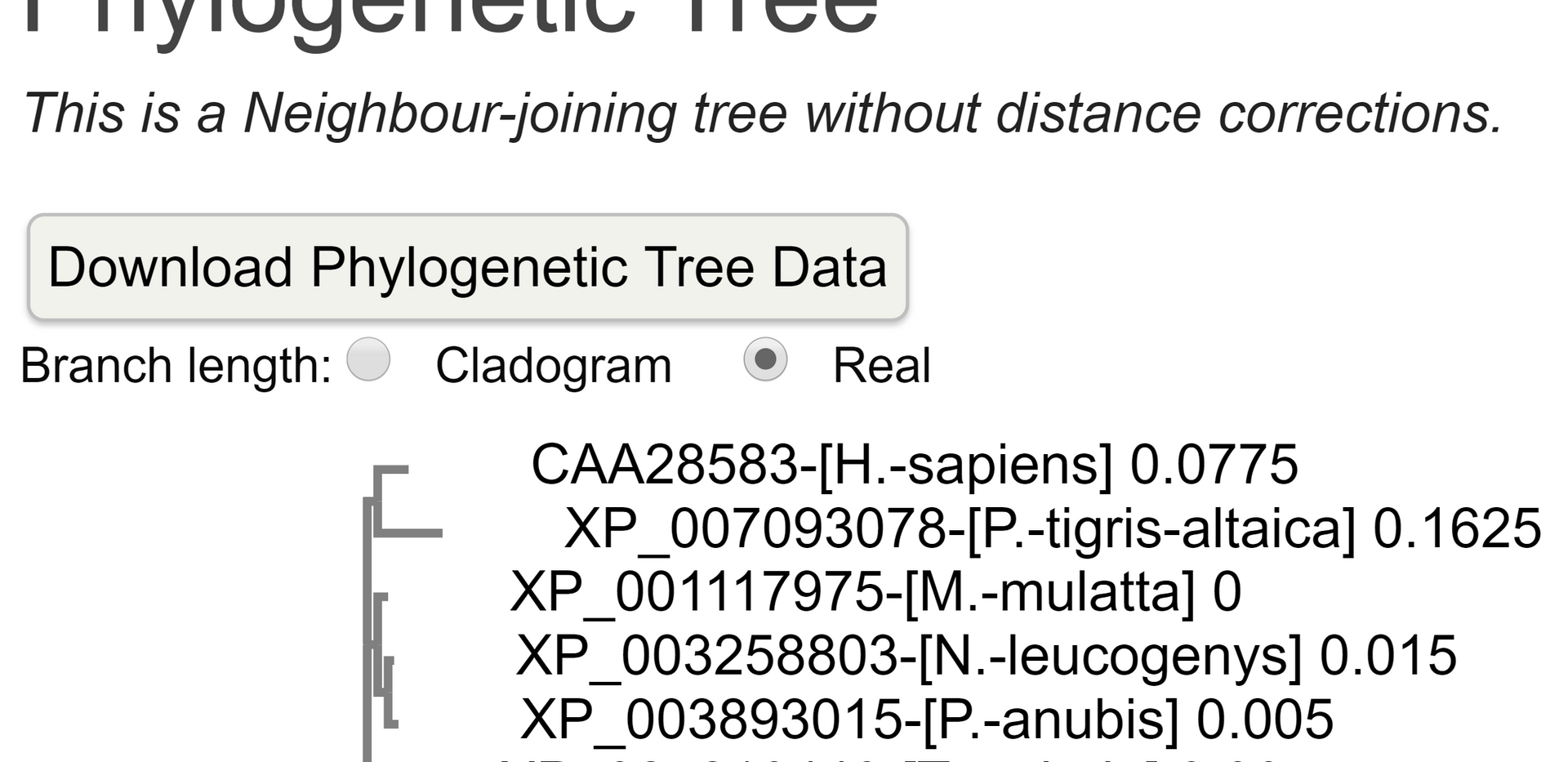Phylogenetic Trees-Tcoffee (1).png