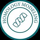 Homology Modeling-01.png