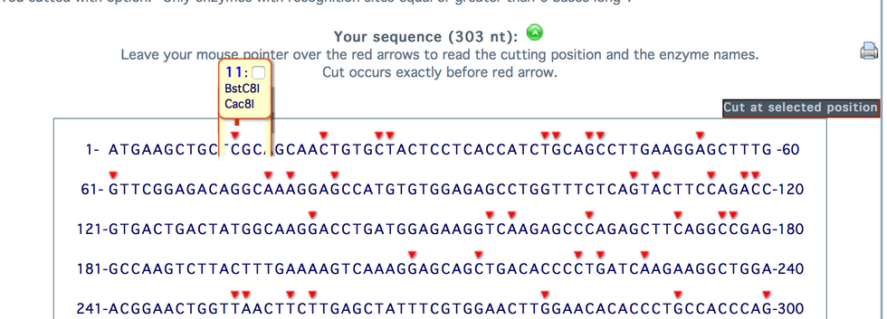 DNA Analysis-Restriction Enzymes (3).png
