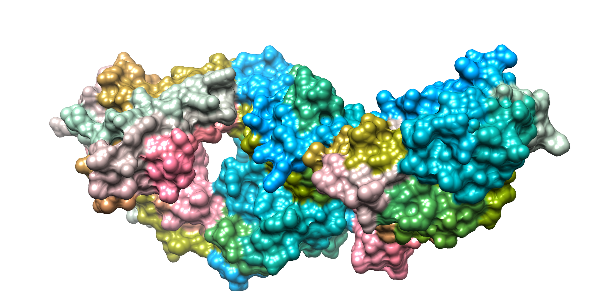 Molecular Docking and Structure  Visuali