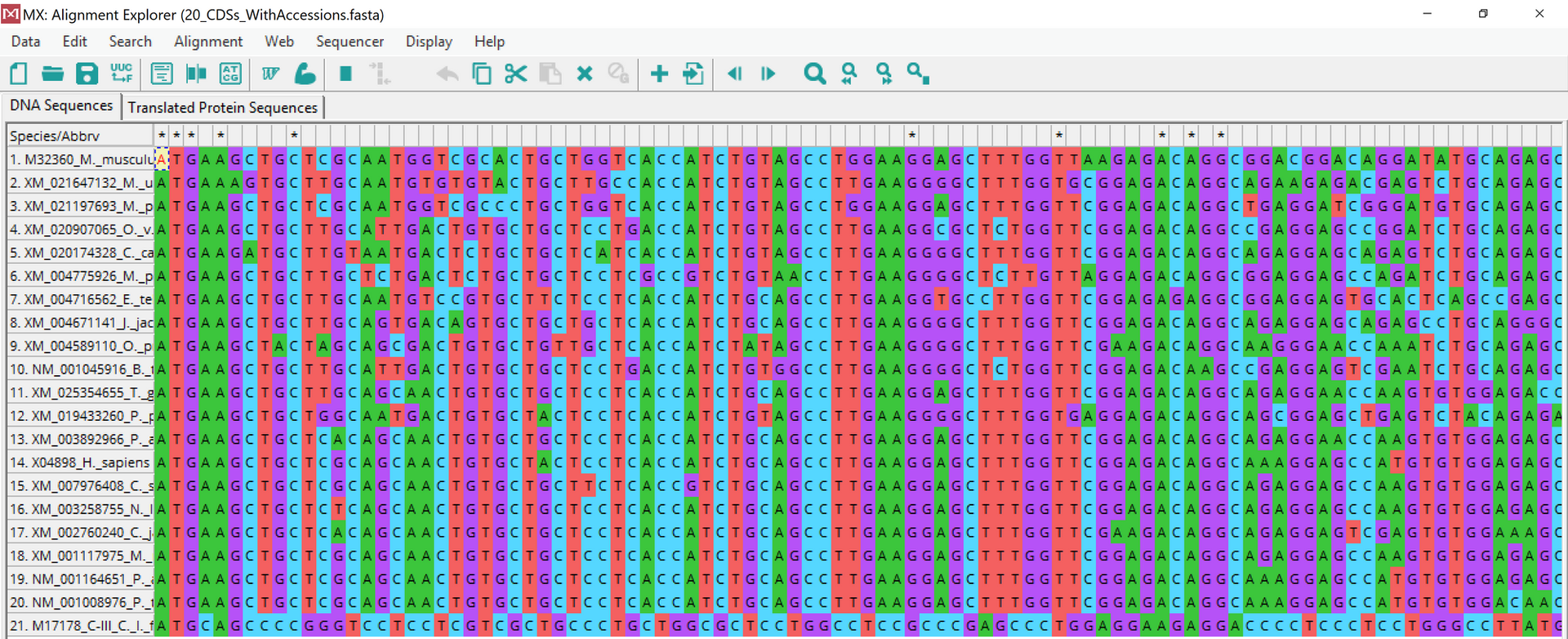 DNA Analysis and Alignment.png