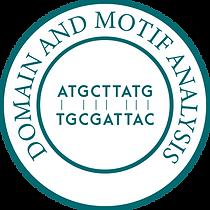 Domain and Motif Analysis-01-01.png
