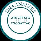 DNA Analysis-01-01.png