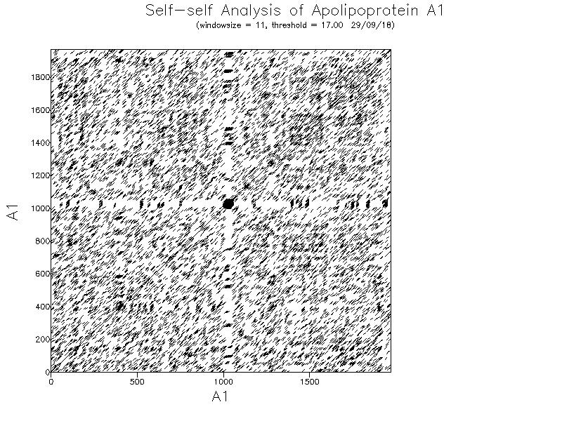 Sequence Analysis-DNA Analysis-Dotmatche