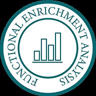Functional Enrichment Analysis-01-01 (1)