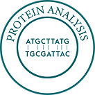 Protein Analysis-01-01.png