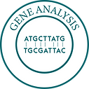 Gene Analysis-01-01.png