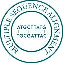 Multiple Sequence Alignment-01-01.png