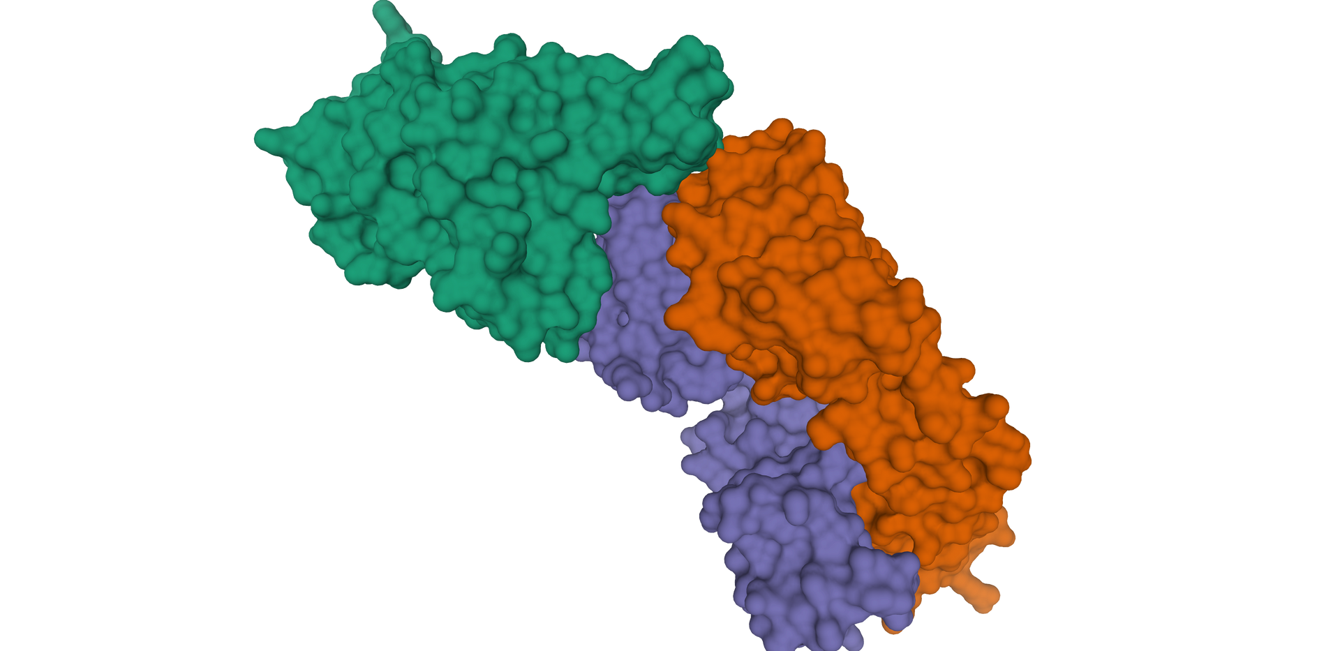 Protein Structure Visualization (2).png