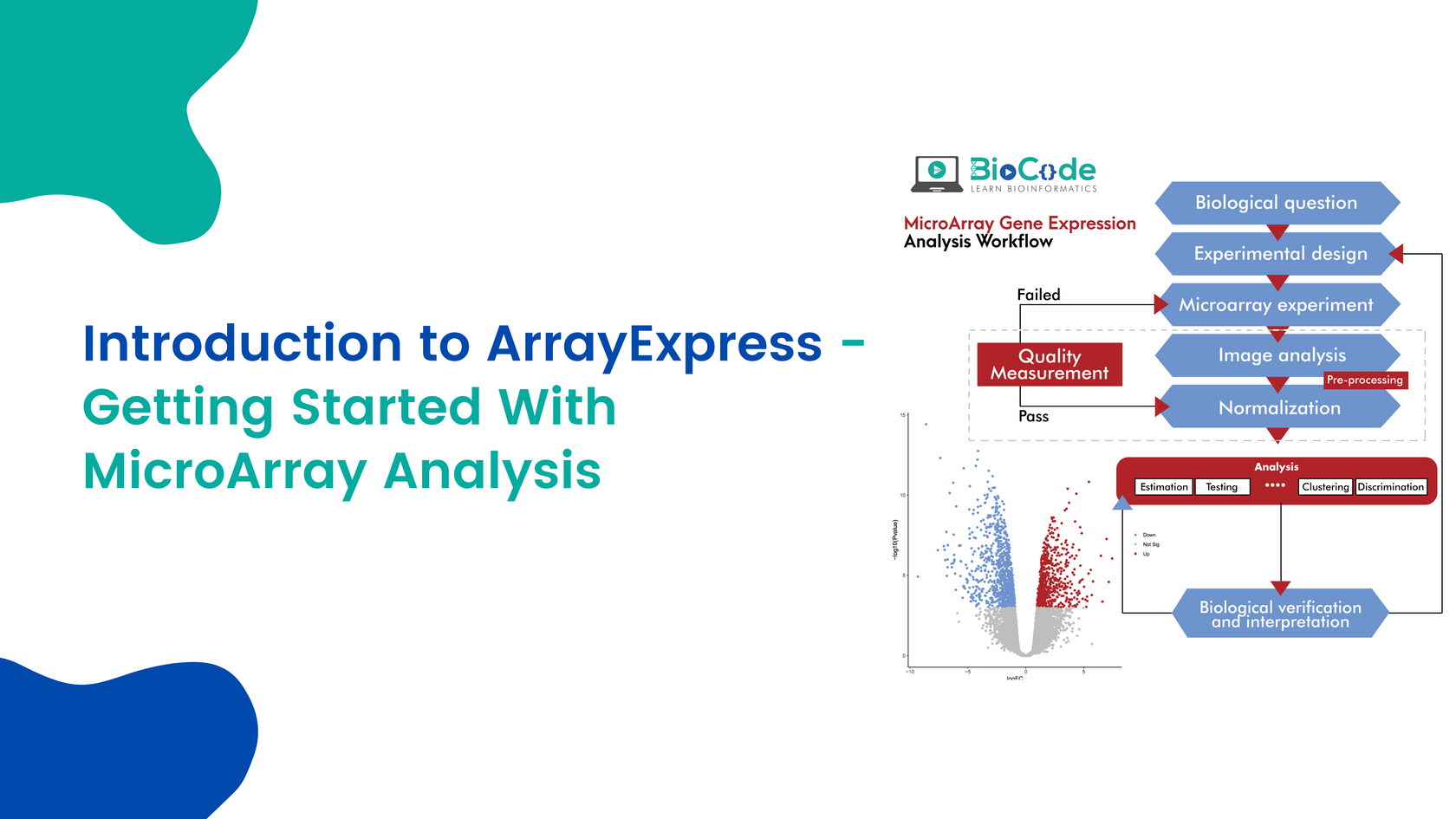 Introduction To Arrayexpress - Getting S