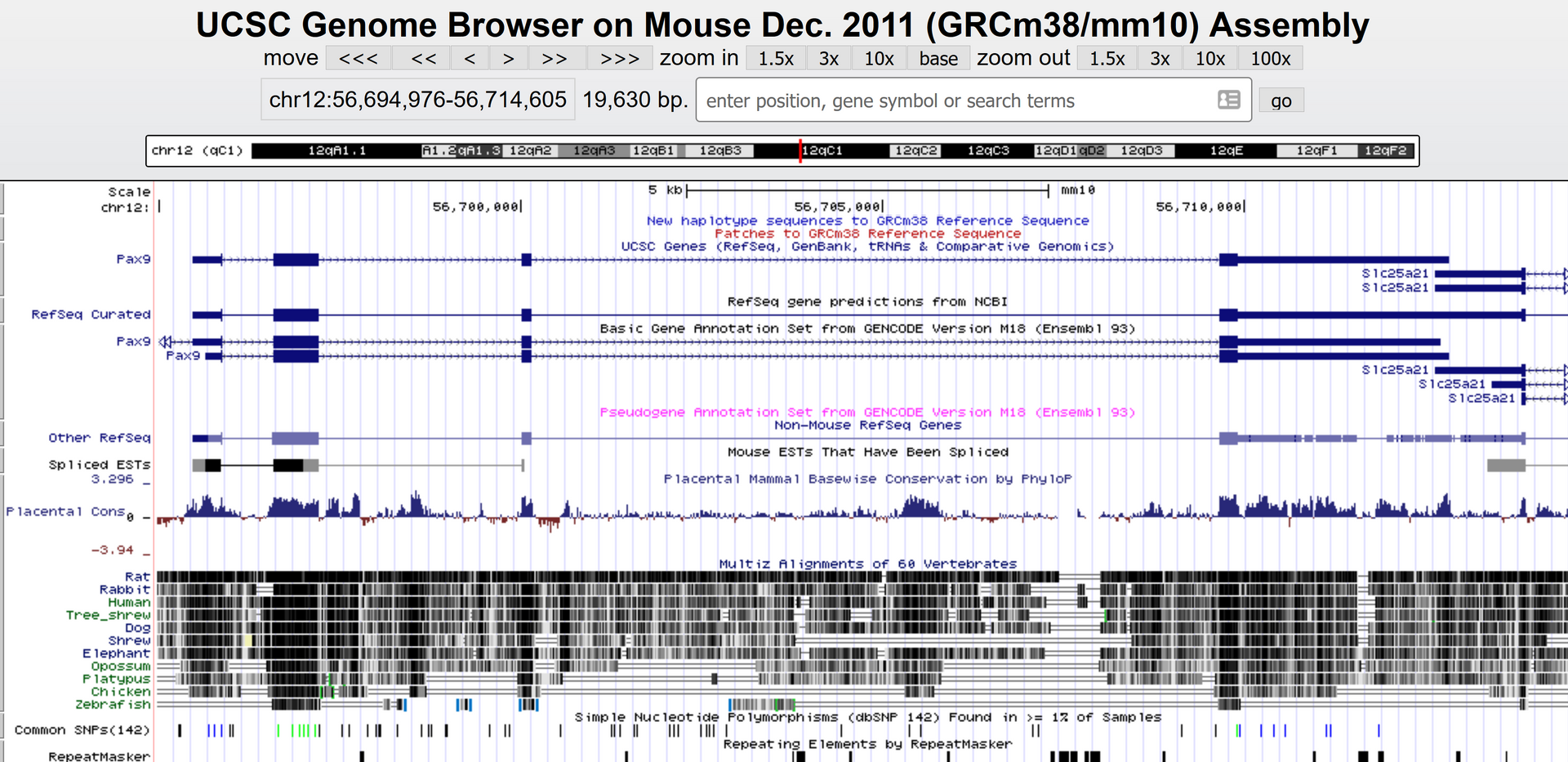 UCSC-Genome Browser1.png
