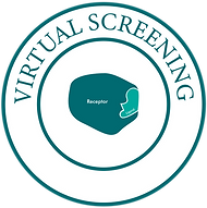 Virtual Screening-01.png