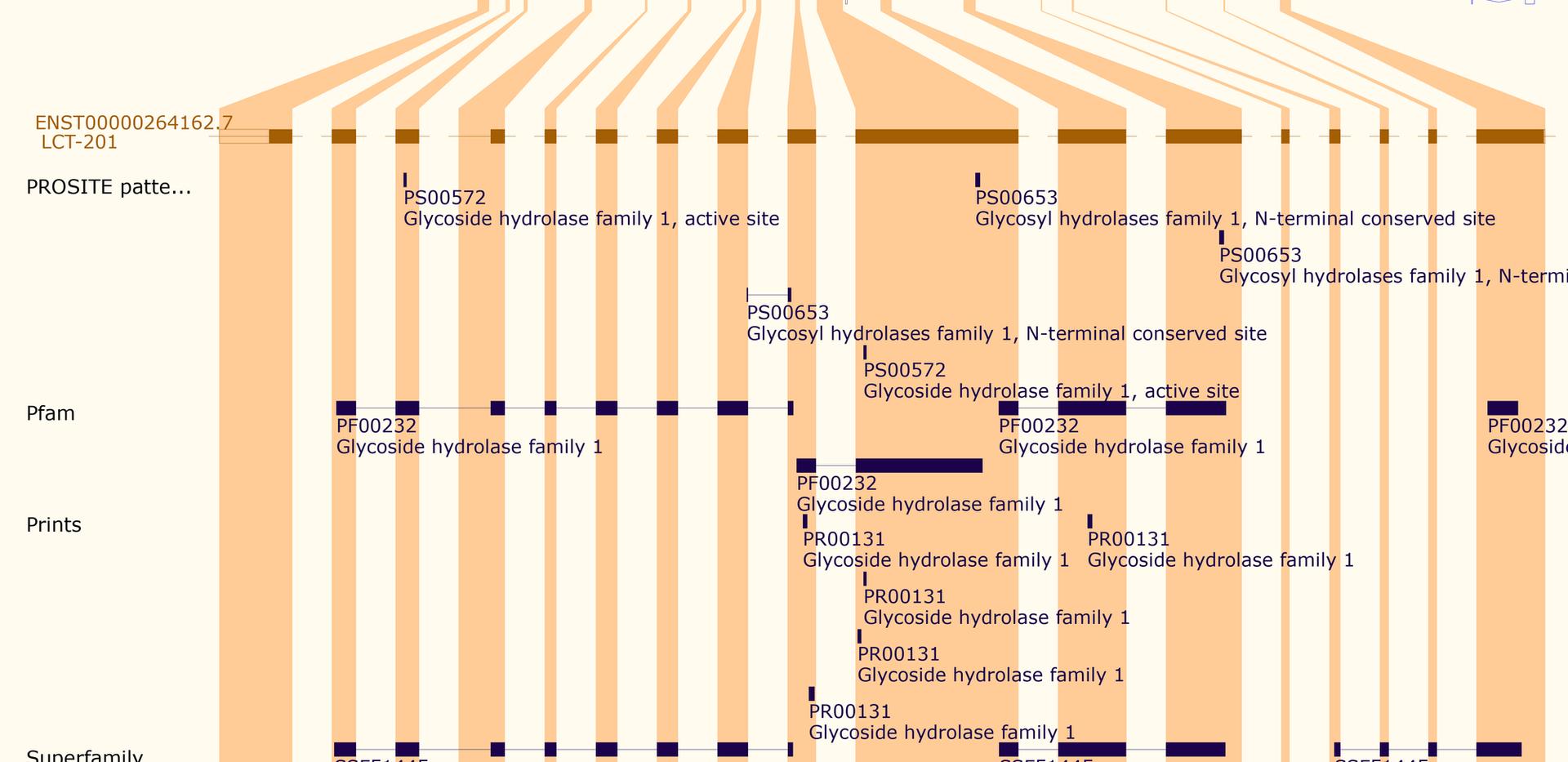 Gene Analysis-ENSEMBL (2).png