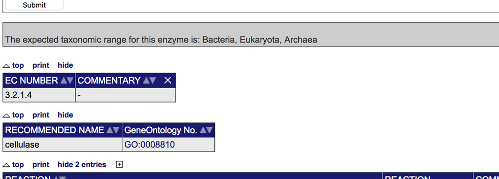 Protein Analysis-Enzymes (3).png