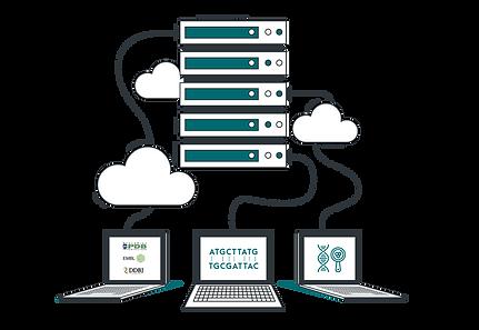 Cloud-Analysis-Transparent.png