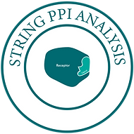 STRING PPI Analysis-01.png