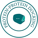 Protein Protein Docking-01.png
