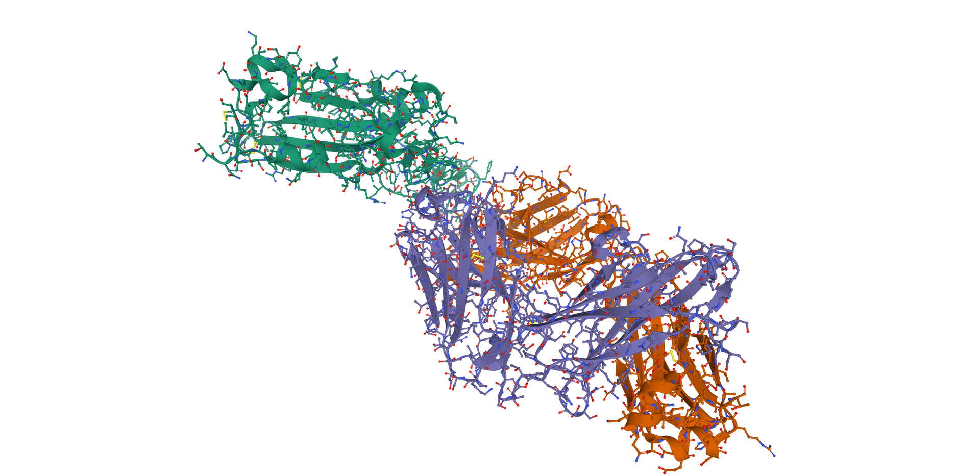 Protein Structure Visualization (1).png