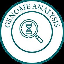 Genome Analysis-01-01.png
