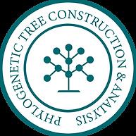 Phylogenetic Tree Construction & Analysi