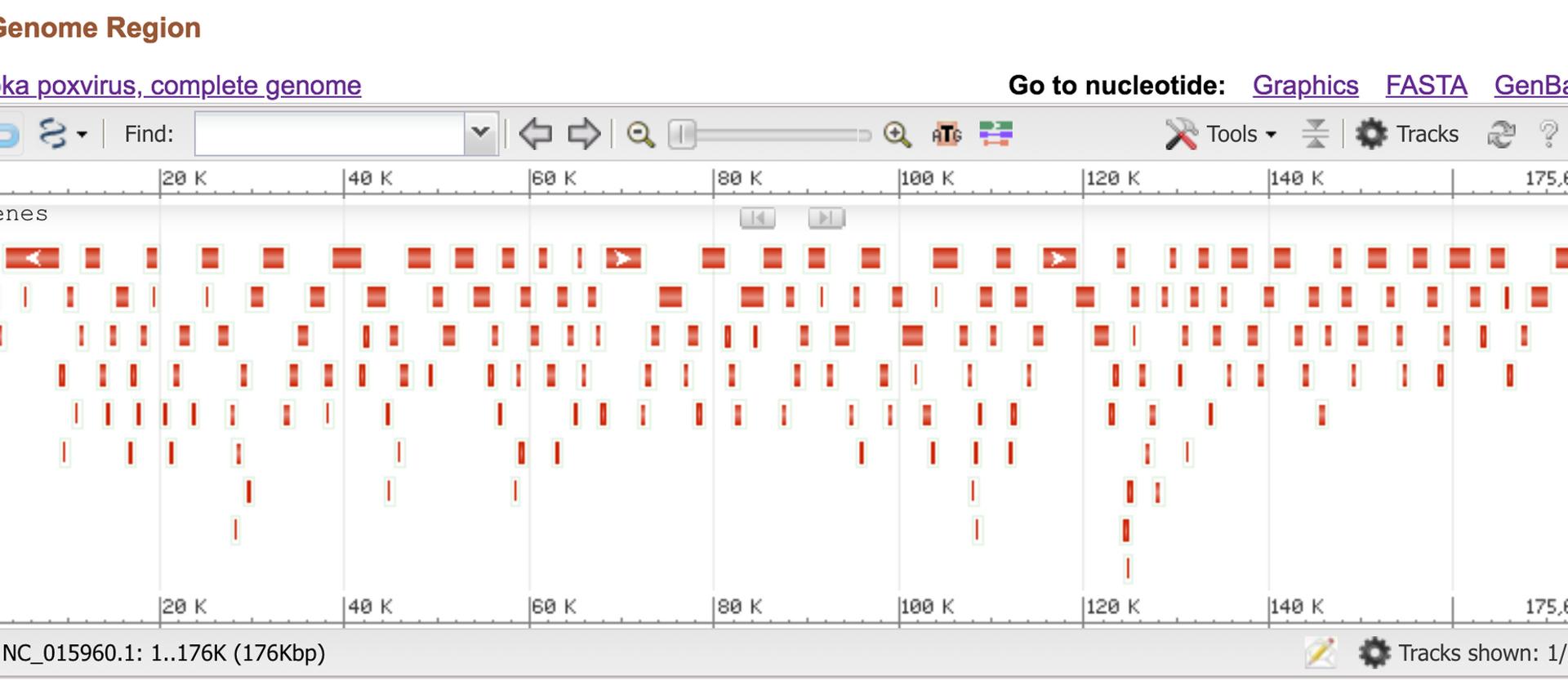 Genome Analysis-Data Retrieval-NCBI (6).