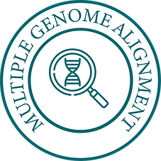 Multiple Genome Alignment-01-01.png