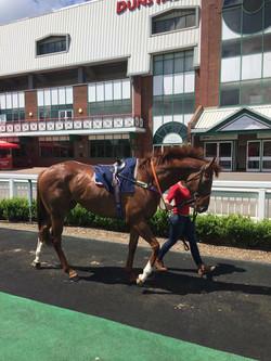 scott-dixon-racing (16)