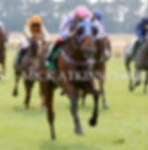 Race 7 - Penny Dreadful (4).jpg