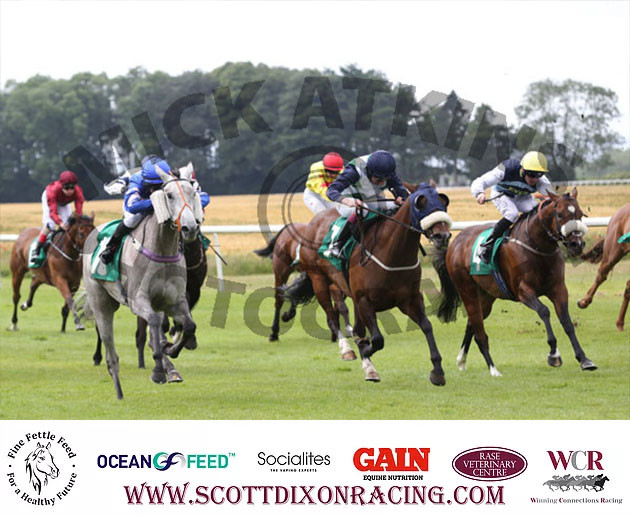 Optimickstickhill Storms Home At Thirsk Racecourse