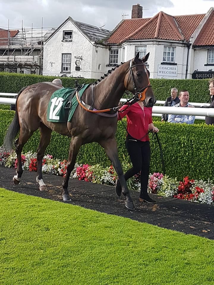 scott-dixon-racing (46)