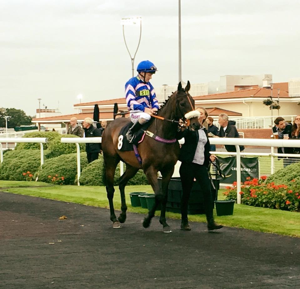 scott-dixon-racing (25)