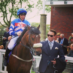 One of my fave racecourses Beverley _horse_racing17 _horsebreeds #racing #horse #winner #winning