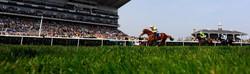 Doncaster+Races+QSbgLHPrM7hx_edited