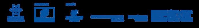 logo video3.png