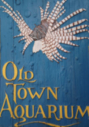 Iconic Old Town Aquarium Sign