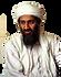 Osama bin Laden, book, bestseller, terrorist, jihad