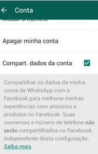 Termos WhatsApp