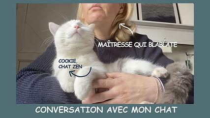 Miniature Conv. Chat.jpg