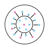 Covid19 Icon V3.png
