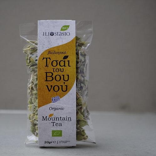 Mountain tea- Sideritis syriaca (ironwort)
